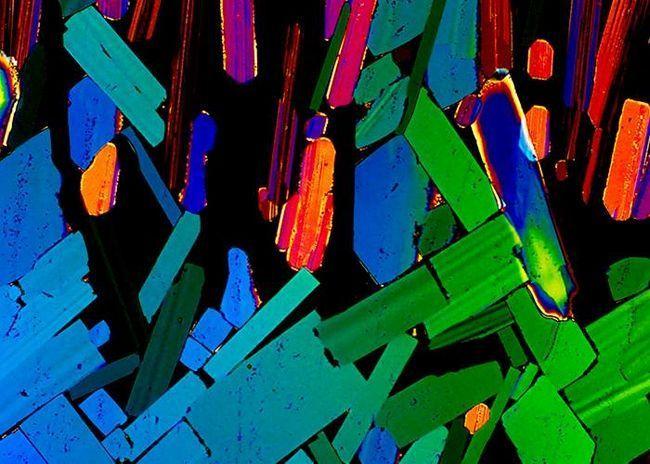 Tequila pod mikroskopom