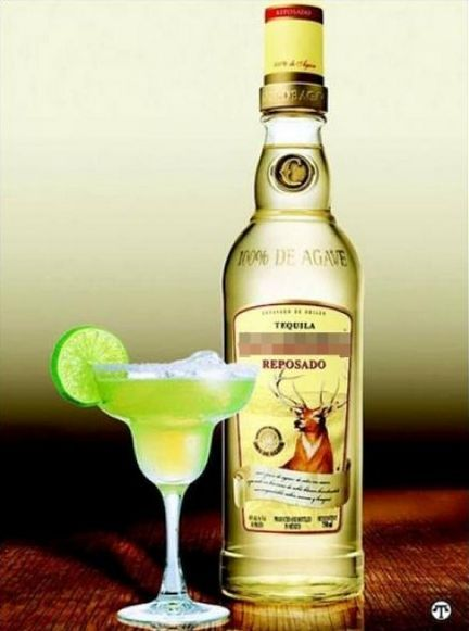 Alkoholowy mojito tequila