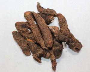 корни бадана