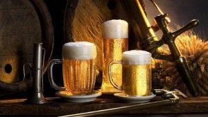 Бизнес на открытии мини-пивоварни