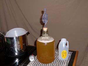 Брага для питья из варенья и сока