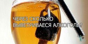Через сколько выводится алкоголь