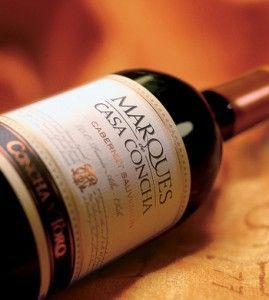 Что из себя представляет чилийское вино