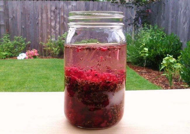 Малиновый джин в процессе настаивания. Рецепт вкусного напитка.
