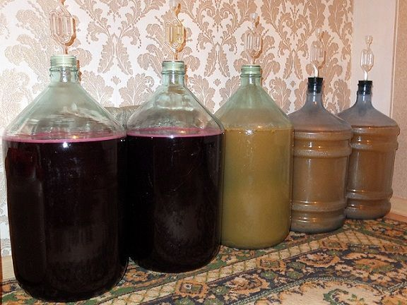 брожение айвового вина фото