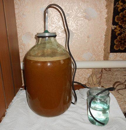 гидрозатвор для вина из белой смородины