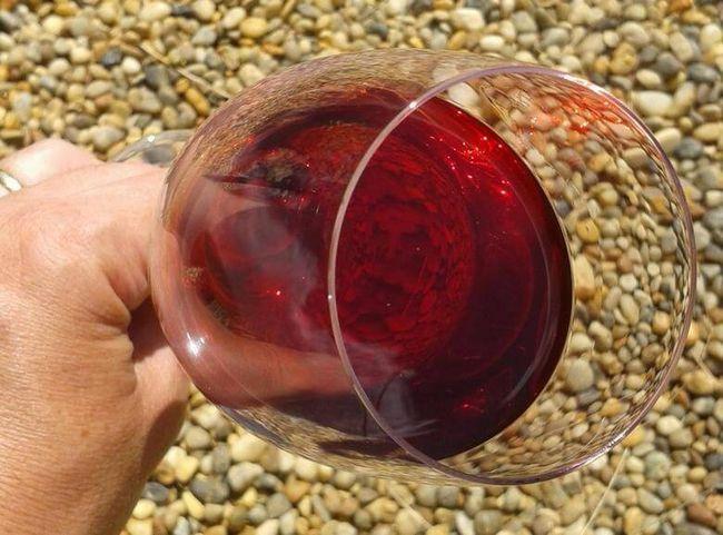 Домашнее вино из вишни – рецепты всех сортов