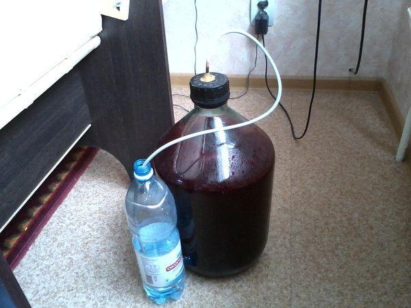 приготовление смородинного вина