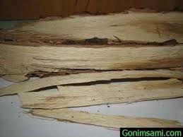 Așchii de stejar (sărași) pentru vodca, coniac