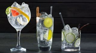 Как правильно пить джин? Секреты настоящих знатоков крепких напитков
