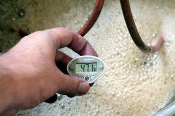 Как правильно приготовить брагу или правильная температура для брожения