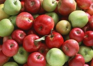 Как приготовить брагу на основе яблок?