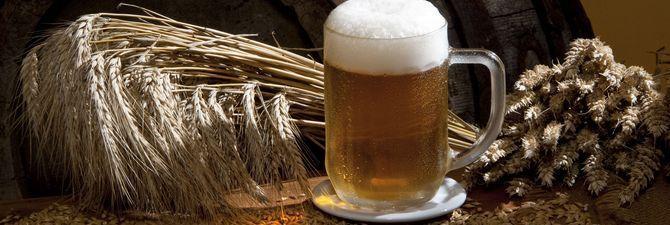 Какое оборудование для производства пива необходимо пивовару