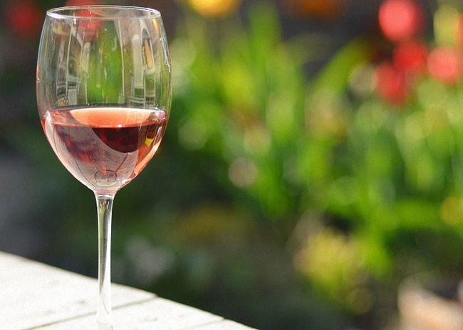 Домашнее вино из сухого шиповника