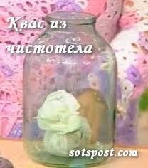 Cvas Bolotov