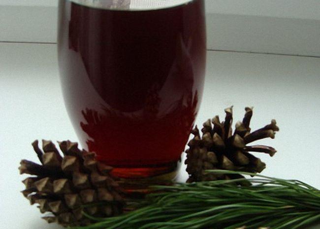 Лечебные настойки шишек на водке: рецепты приготовления