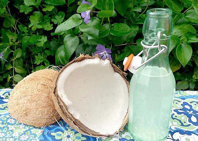 Ликер из кокоса: рецепт и с чем пить кокосовый ликер
