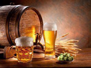 Безопасность употребления пива при беременности