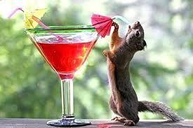Напитки на День рождения