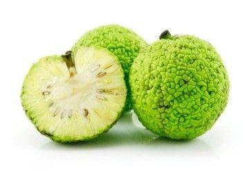 Настойка адамово яблоко помощник в лечении суставов