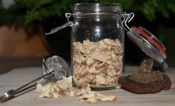 Настойка чаги — сила чайного гриба
