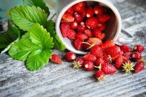 Настойка из ягод земляники