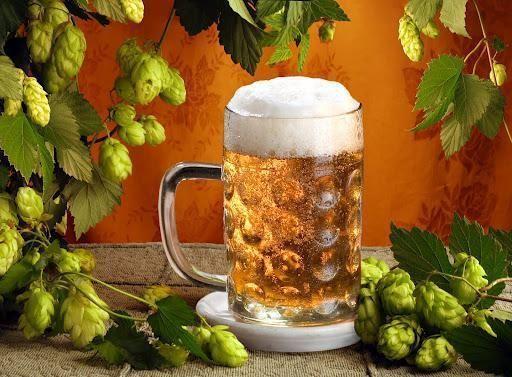 Общий рецепт домашнего пива