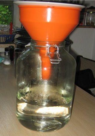 фильтрация после ржаного хлеба