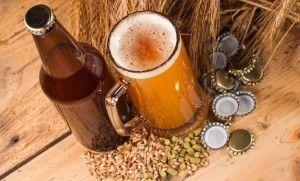 Основы пивоварения в домашних условиях