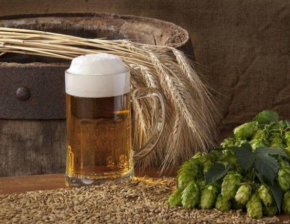 Отличный рецепт пшеничного пива