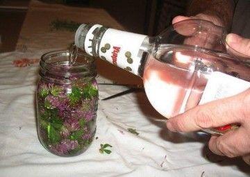 Приготовление и применение настоек на водке