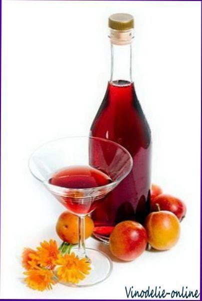 Приготовление плодово-ягодных и виноградных вин в домашних условиях