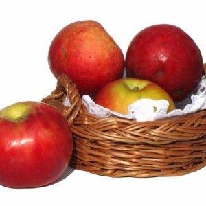 Простая брага из яблок для самогона: 3 рецепта