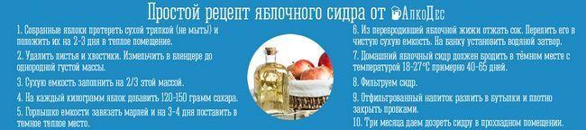 простой рецепт яблочного сидра