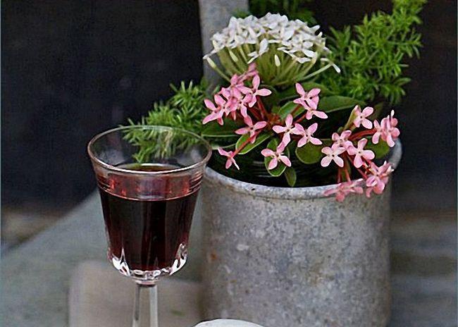 Рецепт ликера «амаретто» и с чем его пить