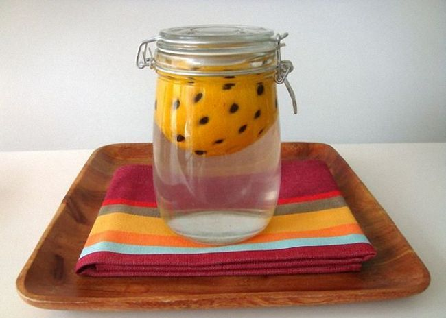 Pomarańczy umieścić w słoiku i zalać wódką