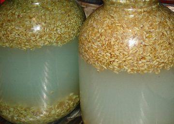 Рецепт пшеничной браги без дрожжей. Как поставить пшеничную брагу в домашних условиях