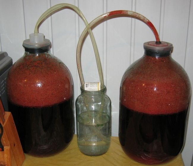 фото водяного затвора для шелковичного вина