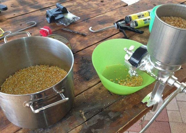 Кукурузные зерна для приготовления самогона