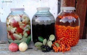 Рецепты настоек на водке из ягод