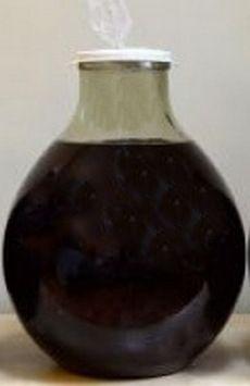 Рецепты настойки из черноплодной рябины