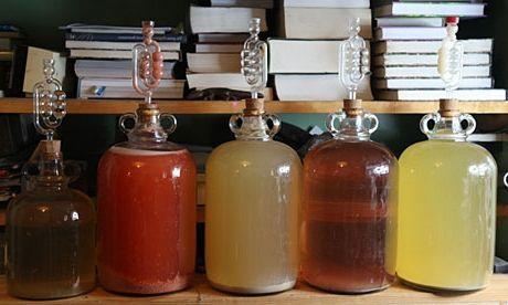 фото фруктовой питьевой браги