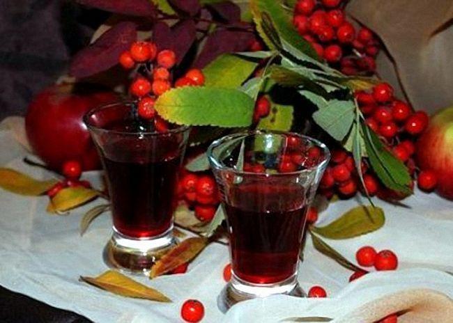 Вино из сока красной рябины