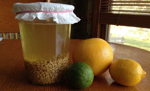 Пшеничный квас хранить в холодильнике