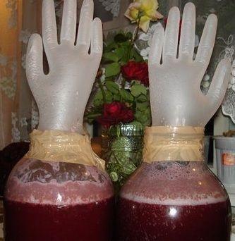 брусничное вино под перчаткой