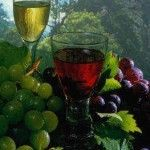 recepti tinkture na grožđe