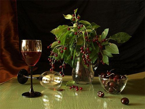 Вино из черемухи на столе