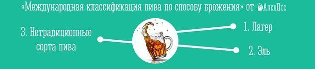 виды пива по способу брожения