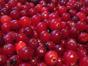Wino i likier Cranberry