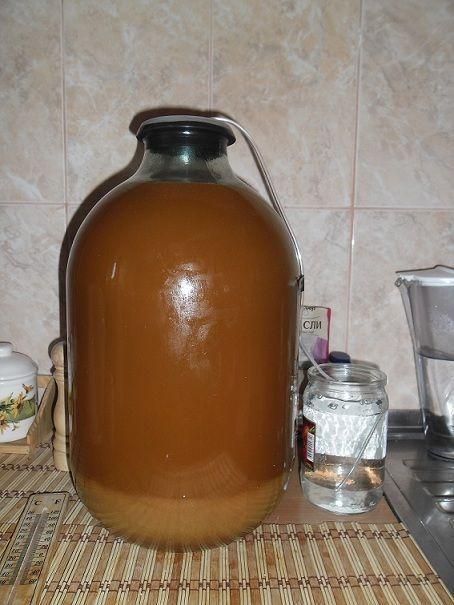 фото брожения вина из фиников
